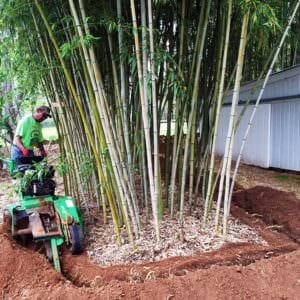 bamboo shield trenching machine