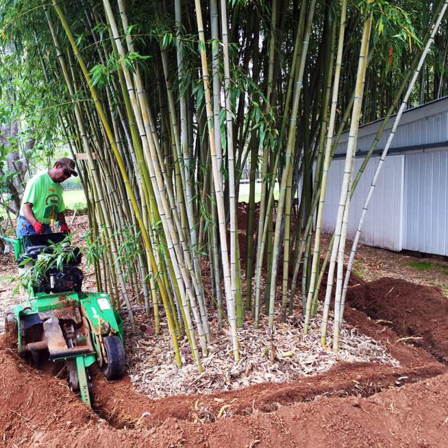 bamboo shield trenching machine
