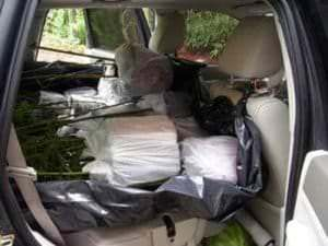 bamboo loaded in small car front and back