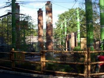 Outside gibbon exhibit
