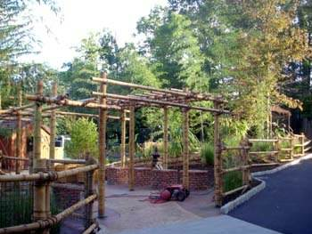 Bamboo entrance way