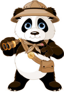 The Bamboo Scout