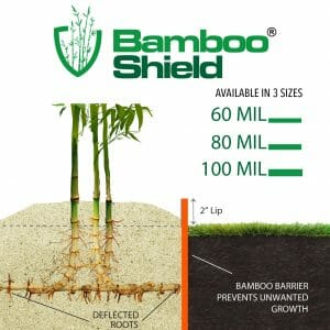 Bamboo Shield sizing chart