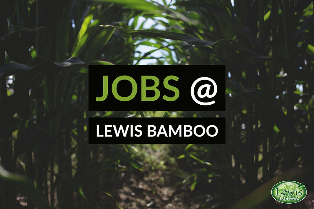 Jobs at Lewis Bamboo